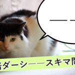 二倍ダーシ「――」スキマ問題! WEB上で綺麗に表示するためのベストな方法は?